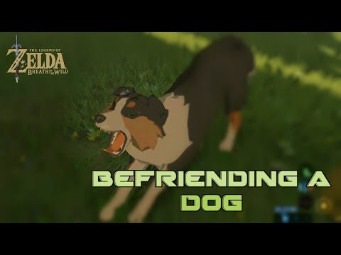 botw how to get dog