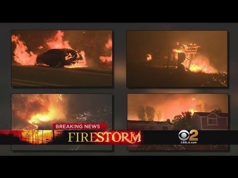 CBS2 News at 11:00 p.m. (Nov. 9)