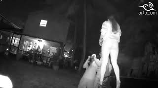 A video from my ARLO camera