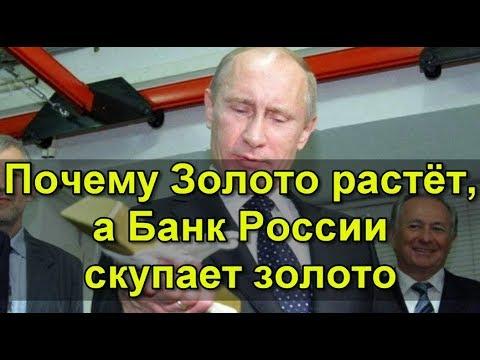 Почему Золото растёт, а Банк России скупает золото.