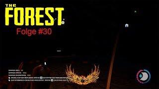 The Forest | Folge #30 | Unbekanntes Terrain!| Gameplay Deutsch | PC/1440p