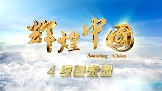 《辉煌中国》 第四集 绿色家园   CCTV