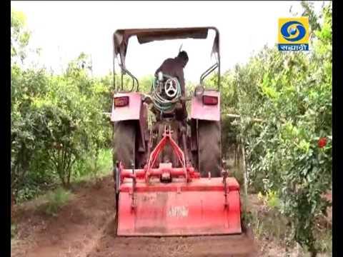 Amchi Mati Amchi Mansa 11 July 2017 ' शेडनेटमधील औषधी वनस्पती....'