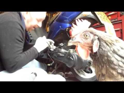 Moped revs up then dies Speedfight mark savage