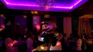 Шуточный стриптиз! Хрюша - стриптизёрша шоу Ростовая кукла Свинья Шоу на свадьбу! Шоу ростовых кукол