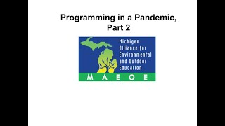 Programming in the Pandemic, Part 2