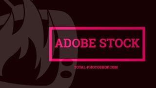 Adobe Stock: come acquistare