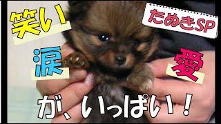 番組提供:ペットライン株式会社(http://www.petline.co.jp/) すっか...
