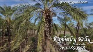 10 acre Date Farm For Sale in Thermal, California