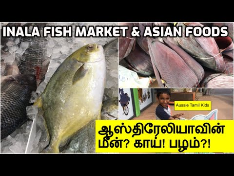Inala Fish Market And Asian Market In Brisbane Australia? || Tamil Vlog!