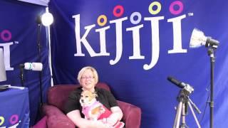 Pomeranian Jack Russell Mix, Kita - June 8, 2013