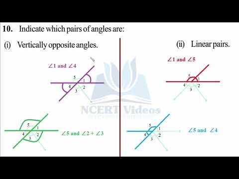 Lines and Angles 5.1