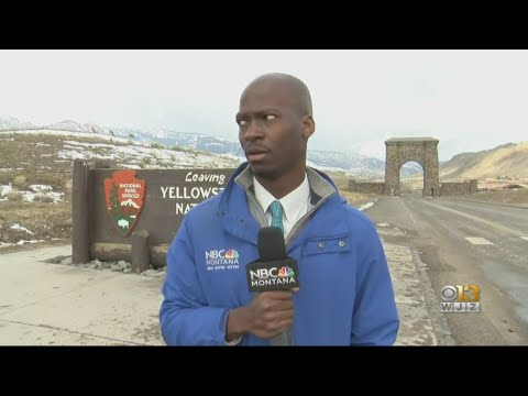 Baltimore Native Deion Broxton Becomes Viral Hit Over Yellowstone Bison Video