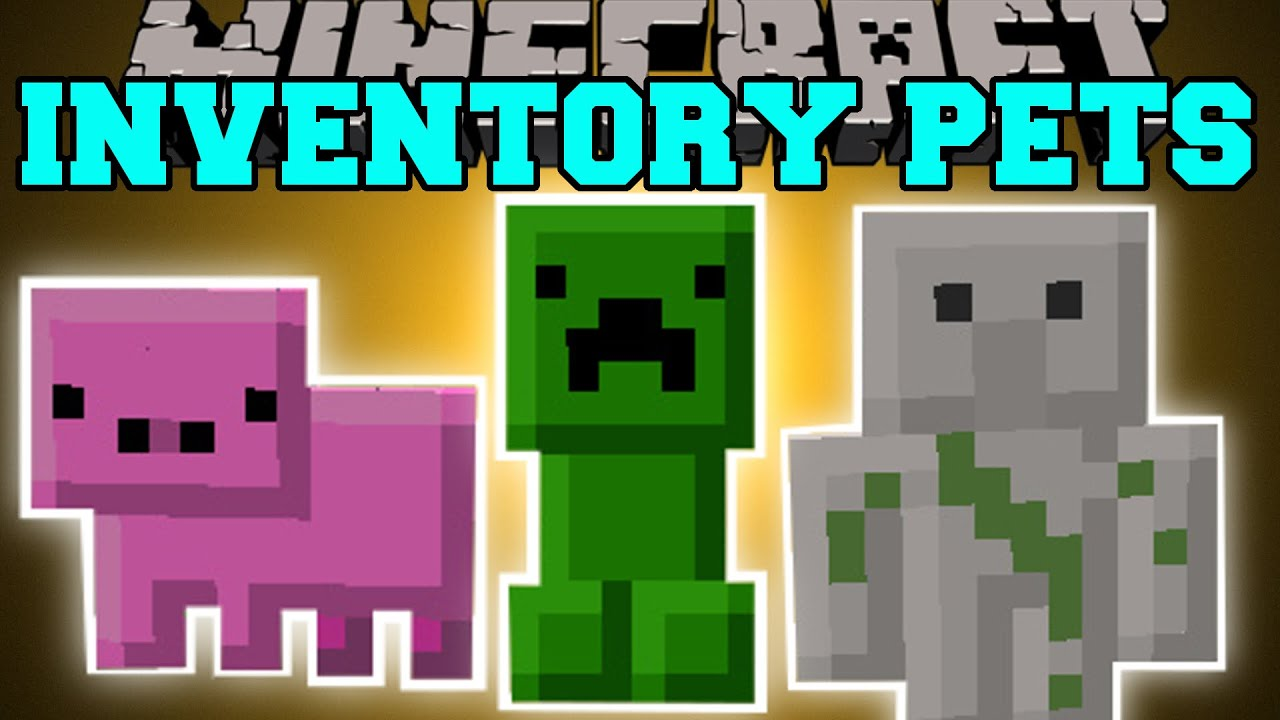 Minecraft: INVENTORY PETS MOD (INSANE SPECIAL POWERS ...