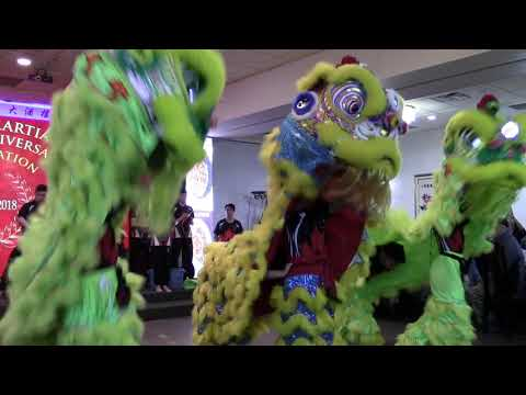 Jing Ying 10th Anniversary Lion Dance - 2018