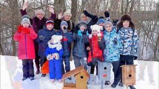 Видео кормления птиц,Детки заботятся о птицах .Конкурс Покормите птиц зимой(Дети,учащиеся школы