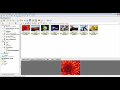 Пакетная обработка фотографий в IrfanView и XnView