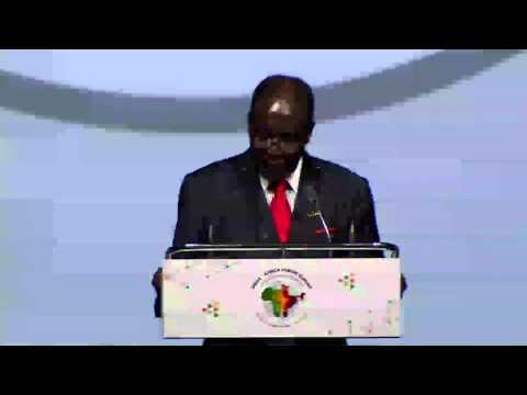 Opening Statement by H. E. Mr. Robert Gabriel Mugabe, President of Zimbabwe & African Union