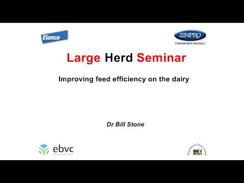 Improving feed efficiency on the dairy by Dr Bill Stone
