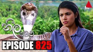 Neela Pabalu (නීල පබළු) | Episode 825 | 01st September 2021 | Sirasa TV Thumbnail