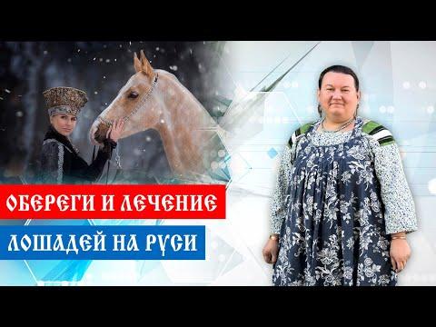 Обереги лошадей. Лечение лошадей