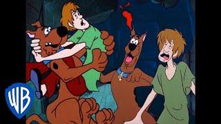 Scooby-Doo! auf Deutsch | Das Beste von den Angsthasen, Scooby & Shaggy | WB Kids