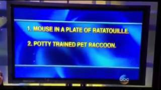 Potty-trained pet raccoon