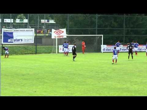 Yokohama F. Marinos - SK Dynamo České Budějovice, Group G, All Stars Cup 2014