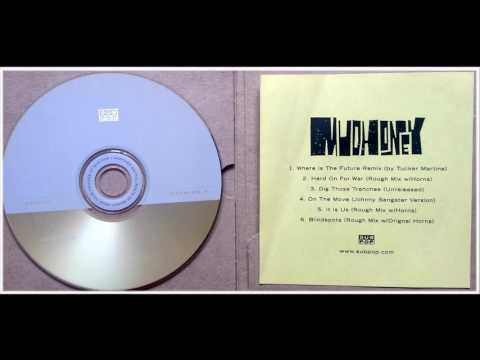 "Mudhoney - ""Where Is The Future"" Remix (by Tucker Martine)"