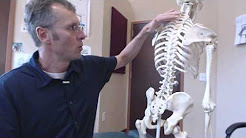 Burning mid back pain radiating into Shoulder by Asheville chiropractor, Dr. Bart Hodgins