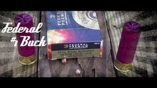 Federal Flight Control #1 Buckshot Ballistics Gel Test (LE132-1B) HD
