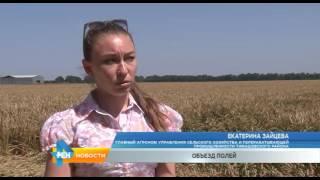 ТТВ. Новости РЕН-Тимашевскю Выпуск от 23 июня 2016