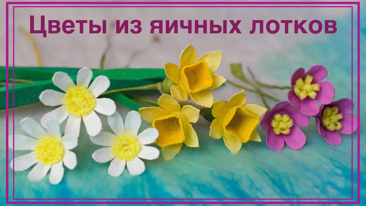 Цветы из яичных лотков. Нарцисс, ромашка, фиалка. Flowers made of egg box. Narcissus, chamomile