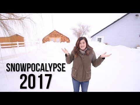SNOWPOCALYPSE 2017 // Garden Answer