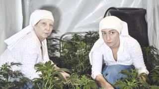 Dos monjas pusieron una granja de marihuana en California con la intención de curar