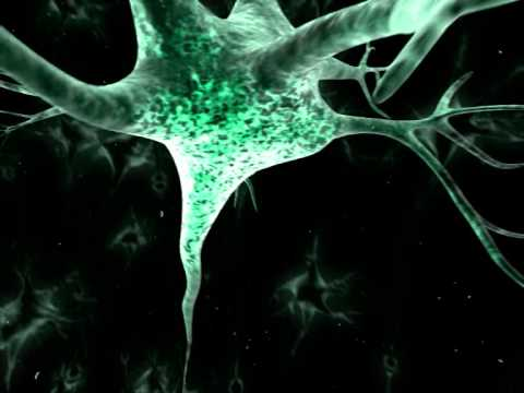 Cot - Serotonine (Intro)