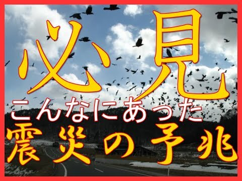20180618地震の前兆や予兆まとめ!大阪北部地震でも注目されている前兆予兆!?カラスだけじゃなかったこんなにある地震の予兆前兆