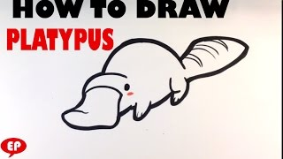 How to Draw a Platypus (cute) - Easy Pictures to Draw