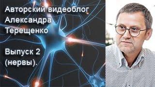 Авторский видеоблог Александра Терещенко. Выпуск 2 (нервы).