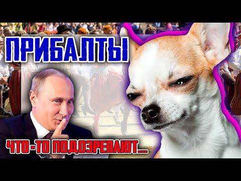 ПРИБАЛТЫ что-то подозревают. Поправки в конституцию РФ и эстонский политик