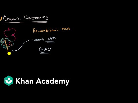 Introduction to genetic engineering | Molecular genetics | High school biology | Khan Academy