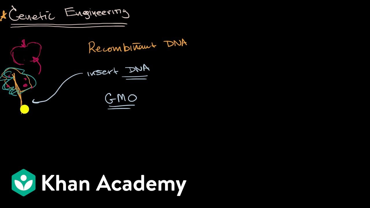 Introduction to genetic engineering (video) | Khan Academy