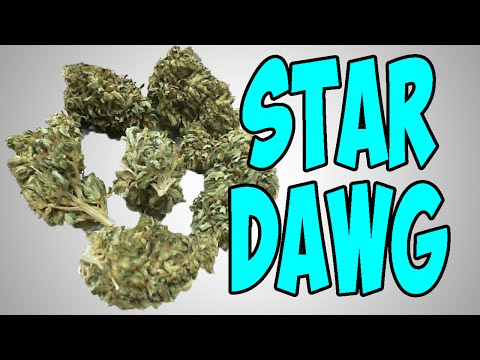 ★★★ NUG PORN ★★★ CHERRY PIE from YouTube · Duration:  5 minutes 16 seconds