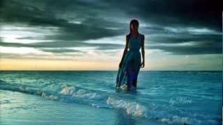 El delfin azul  -  The Blue Dolphin -  Stephen Schlaks