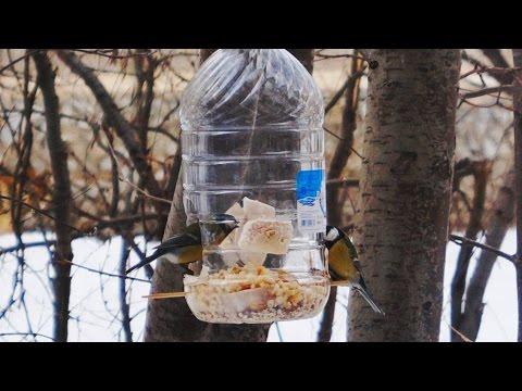 Поможем пернатым перезимовать! Кормушка для птиц из пластиковой пятилитровой бутыли.