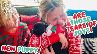 🙀 CHRISTMAS PUPPY REACTIONS! 🎄🎅 BETTER THAN iPHONE! Slyfox Family X-Mas Morning | Slyfox Family