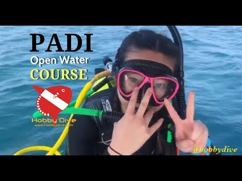 PADI Open Water Course at Pramuka Island with Hobby Dive