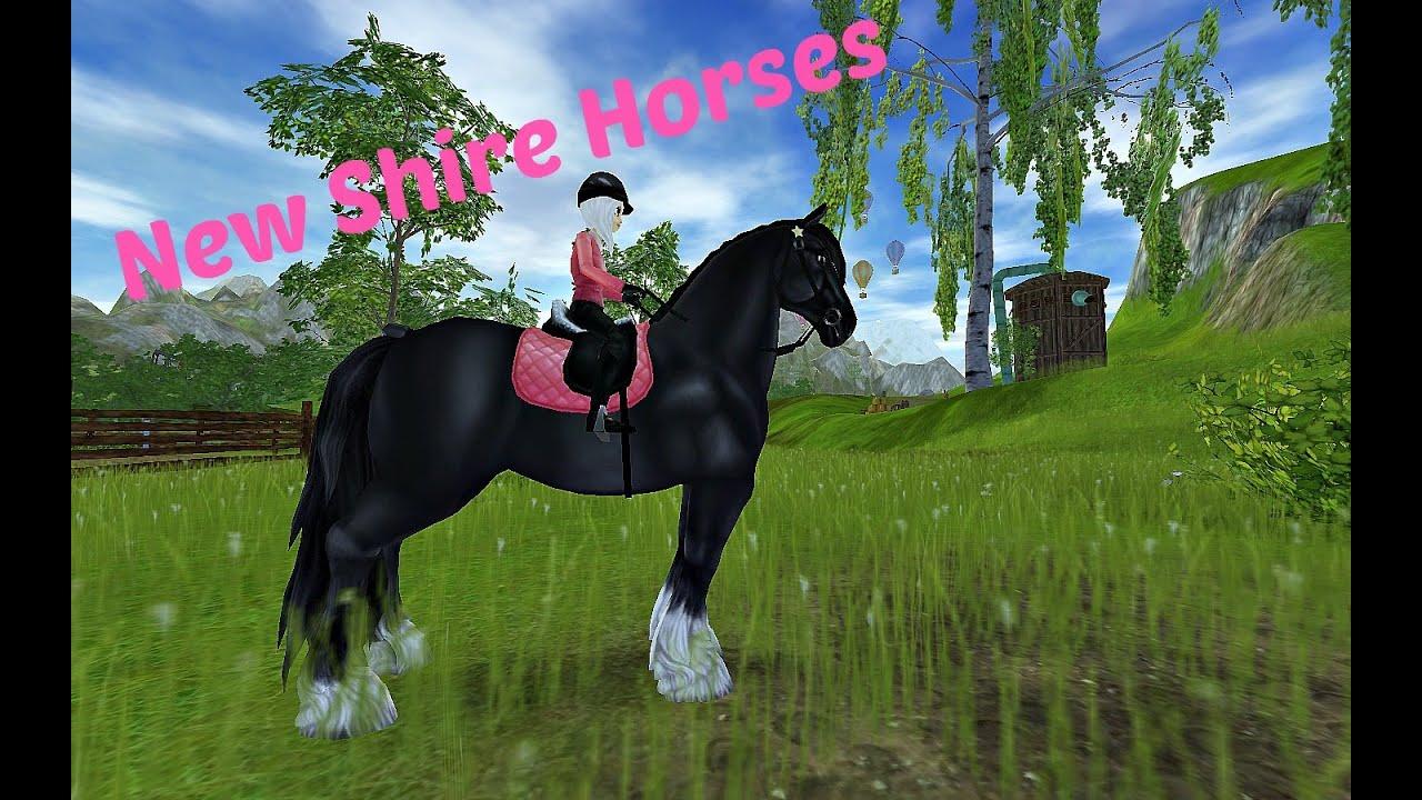 Shire Horse Reiten