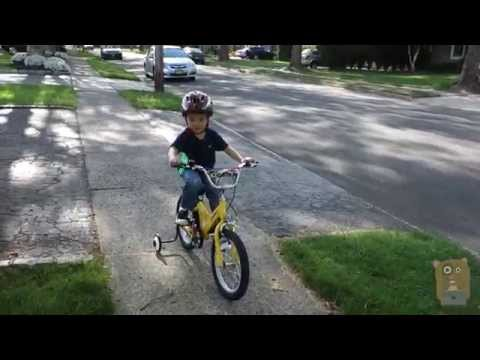 Learning To Ride Bicycle With Training Wheels