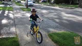 Learning To Ride A Bicycle With Training Wheels